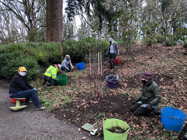 Volunteer Update for 21 February 2019